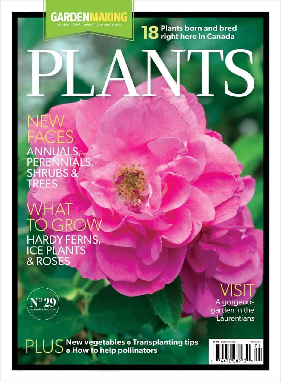 Wonderful Garden Making Issue 29