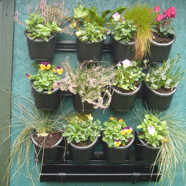 Irrigatia vertical watering system with herbs and flowers.
