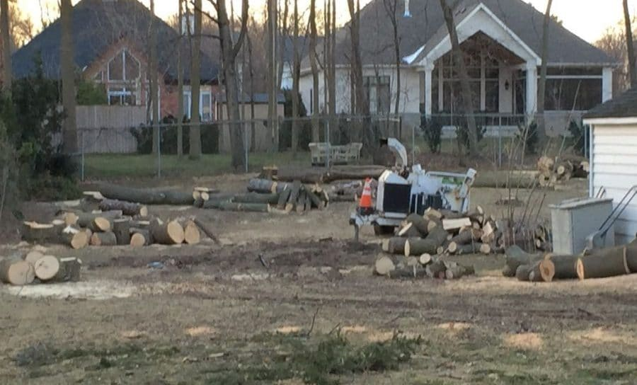 Trees cut down private property Garden Making photo