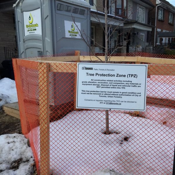 Tree protection zone in front yard of a residence in Toronto.