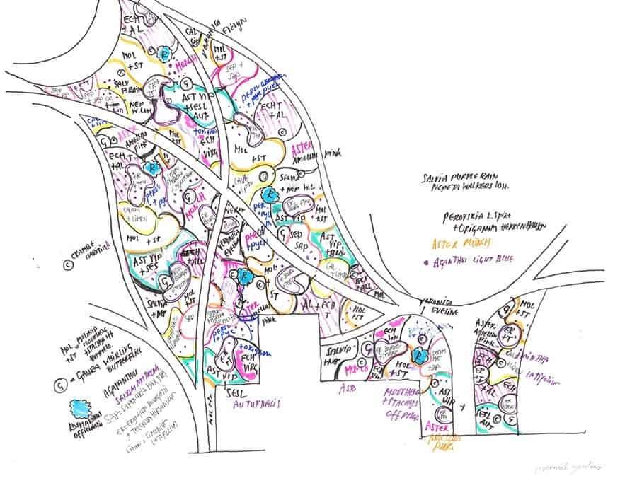 Oudolf sketch for Nantucket garden.