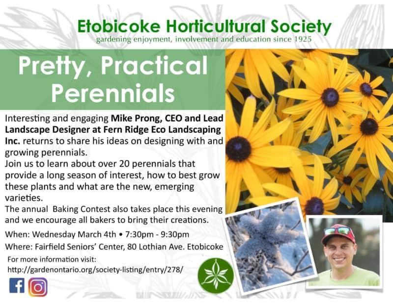 Practical Perennials