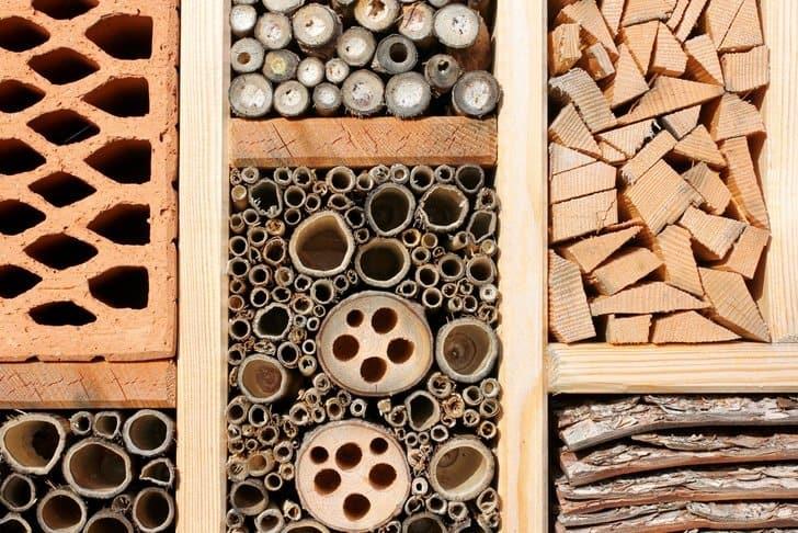 Workshop: Build a Bee-utiful Bee Hotel!