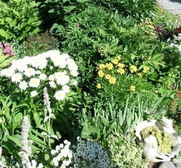 Gananoque Plant Sale