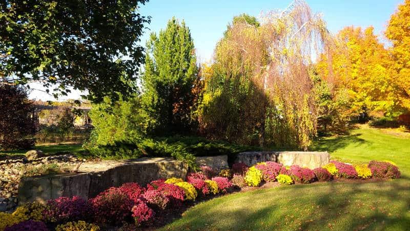 Brian Folmer of Folmer Botannical Gardens will introduce new perennials for 2019.