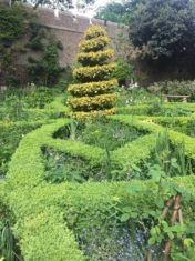 Knot garden at the Garden Museum in Lambeth