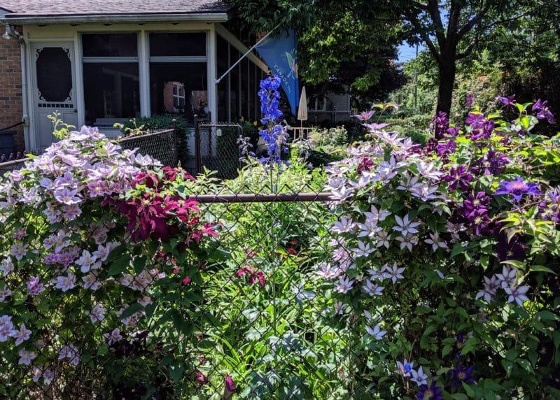 100th Anniversary Garden Tour