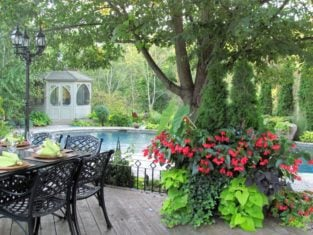 Where: King City, ON | When: Summer 2016 | What: Garden oasis. | Photo: Eleonora S.