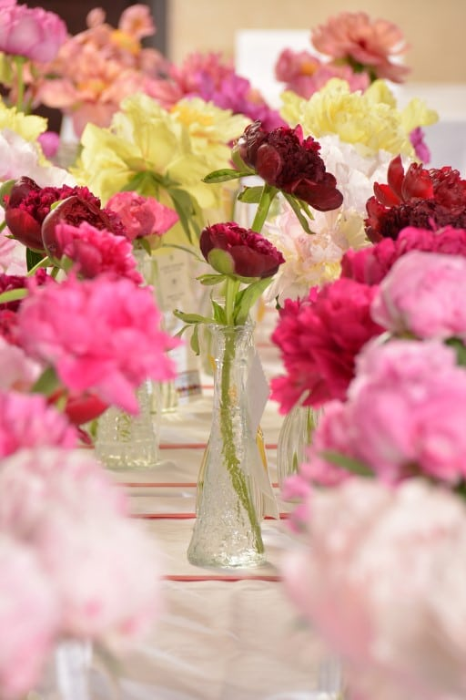 Passion for Peonies: Peony culture and Display