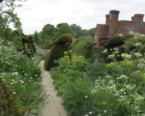 The iconic topiaries at Great Dixter anddouble borders burstingwith feathery perennials. A great contrast of solid and light.
